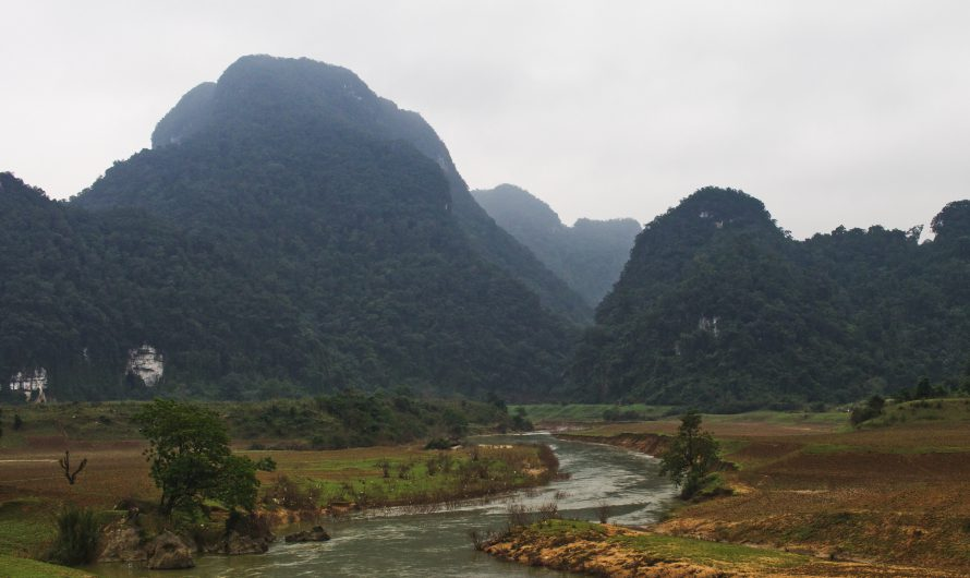 Vietnam 2019: Phong Nha Ke-Bang Nationalpark